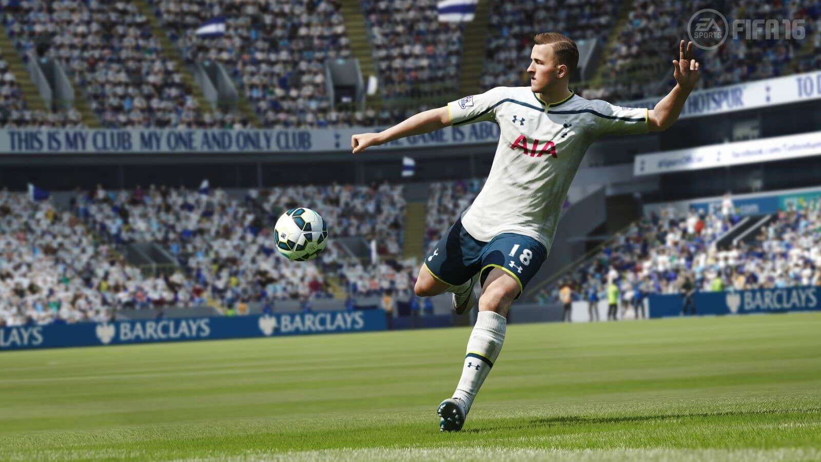 Betting Trends - Opening Components